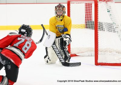 SilverPeak Studios Berkshire Mite Jamboree 2018 Samples Action shots hockey photography PRE_6018