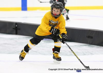 SilverPeak Studios Berkshire Mite Jamboree 2018 Samples Action shots hockey photography PRE_6060