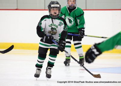 SilverPeak Studios Berkshire Mite Jamboree 2018 Samples Action shots hockey photography PRE_6283
