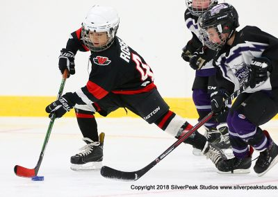 SilverPeak Studios Berkshire Mite Jamboree 2018 Samples Action shots hockey photography PRE_6649