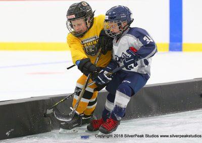 SilverPeak Studios Berkshire Mite Jamboree 2018 Samples Action shots hockey photography PRE_7050
