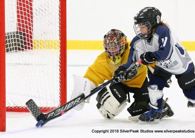 SilverPeak Studios Berkshire Mite Jamboree 2018 Samples Action shots hockey photography PRE_7178