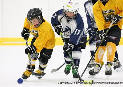 SilverPeak Studios Berkshire Mite Jamboree 2018 Samples Action shots hockey photography PRE_7406