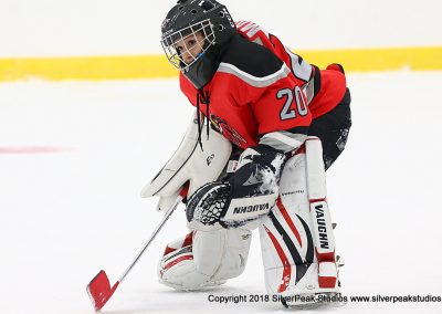 SilverPeak Studios Berkshire Mite Jamboree 2018 Samples Action shots hockey photography PRE_7434