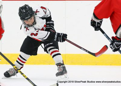 SilverPeak Studios Berkshire Mite Jamboree 2018 Samples Action shots hockey photography PRE_7602