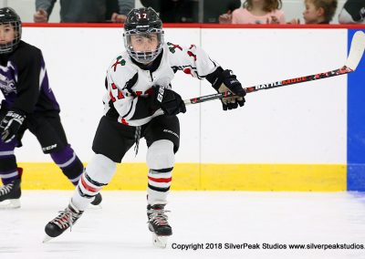 SilverPeak Studios Berkshire Mite Jamboree 2018 Samples Action shots hockey photography PRE_8325
