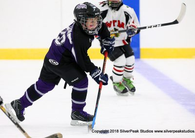 SilverPeak Studios Berkshire Mite Jamboree 2018 Samples Action shots hockey photography PRE_8440