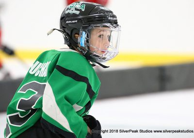 SilverPeak Studios Berkshire Mite Jamboree 2018 Samples Action shots hockey photography PRE_8680