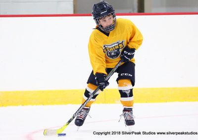 SilverPeak Studios Berkshire Mite Jamboree 2018 Samples Action shots hockey photography PRE_8702