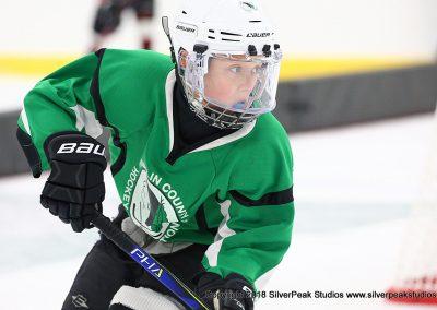 SilverPeak Studios Berkshire Mite Jamboree 2018 Samples Action shots hockey photography PRE_8835