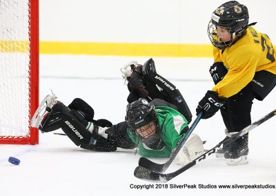 SilverPeak Studios Berkshire Mite Jamboree 2018 Samples Action shots hockey photography PRE_9090