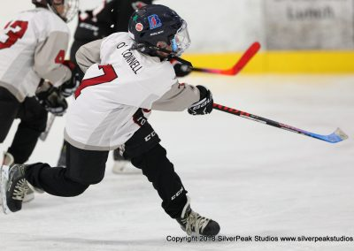SilverPeak Studios Warrior Cup 2018 Game Highlight Photo Action Shots Hockey WAR_0631 Westfield Jr Bombers vs Dedham Squirt A