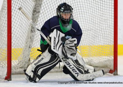 SilverPeak Studios Warrior Cup 2018 Game Highlight Photo Action Shots Hockey WAR_4707 Newport Whalers vs Dedham Squirt A