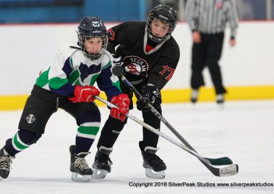SilverPeak Studios Warrior Cup 2018 Game Highlight Photo Action Shots Hockey WAR_4708 Dedham vs Newport Squirt A