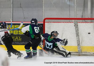 SilverPeak Studios Warrior Cup 2018 Game Highlight Photo Action Shots Hockey WAR_5049 Newport Whalers vs Dedham Squirt A