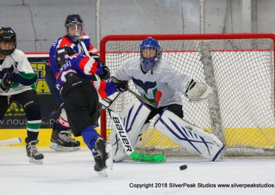 SilverPeak Studios Warrior Cup 2018 Game Highlight Photo Action Shots Hockey WAR_5370 Newport Whalers vs Quincy Youth Hockey Peewee B Championship