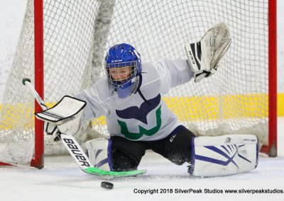 SilverPeak Studios Warrior Cup 2018 Game Highlight Photo Action Shots Hockey WAR_5483 Newport Whalers vs Quincy Youth Hockey Peewee B Championship